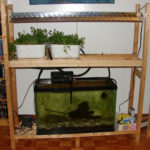 5 Things To Consider When Building An Aquaponics System